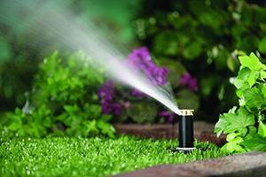 centro-irrigazione-giardini
